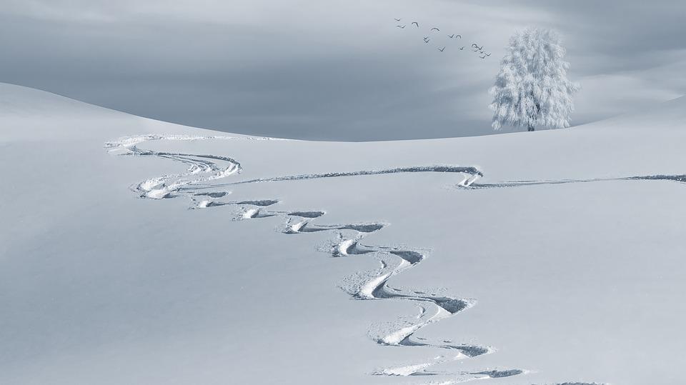 銀魂 スキー篇