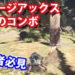 【MHW】モンハンワールドチャージアックスの3つの必須コンボ!初心者必見!